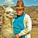 Koffiebonen Peru Chanchamayo 1 kg