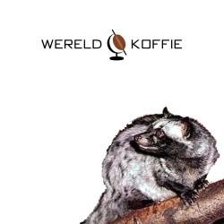 Wild Kopi Luwak (WAP approved/UTZ certified)